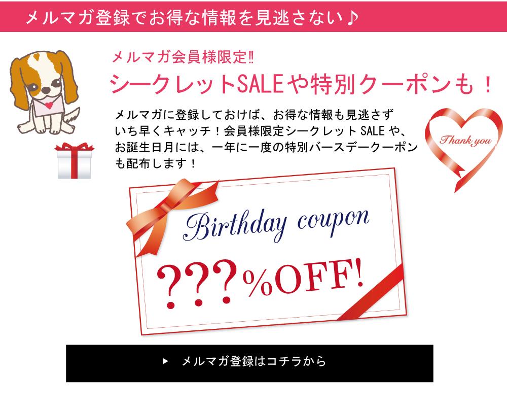 お得な情報をいち早くキャッチできて購読者限定セールやプレゼント企画など盛りだくさんのメールマガジン